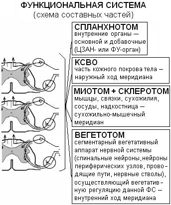 Разбор темы РОФЭС и его модификации Attachment